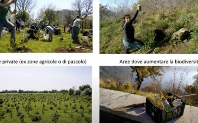 Ri-Forestiamo Italia, Piantare alberi, salvare il pianeta